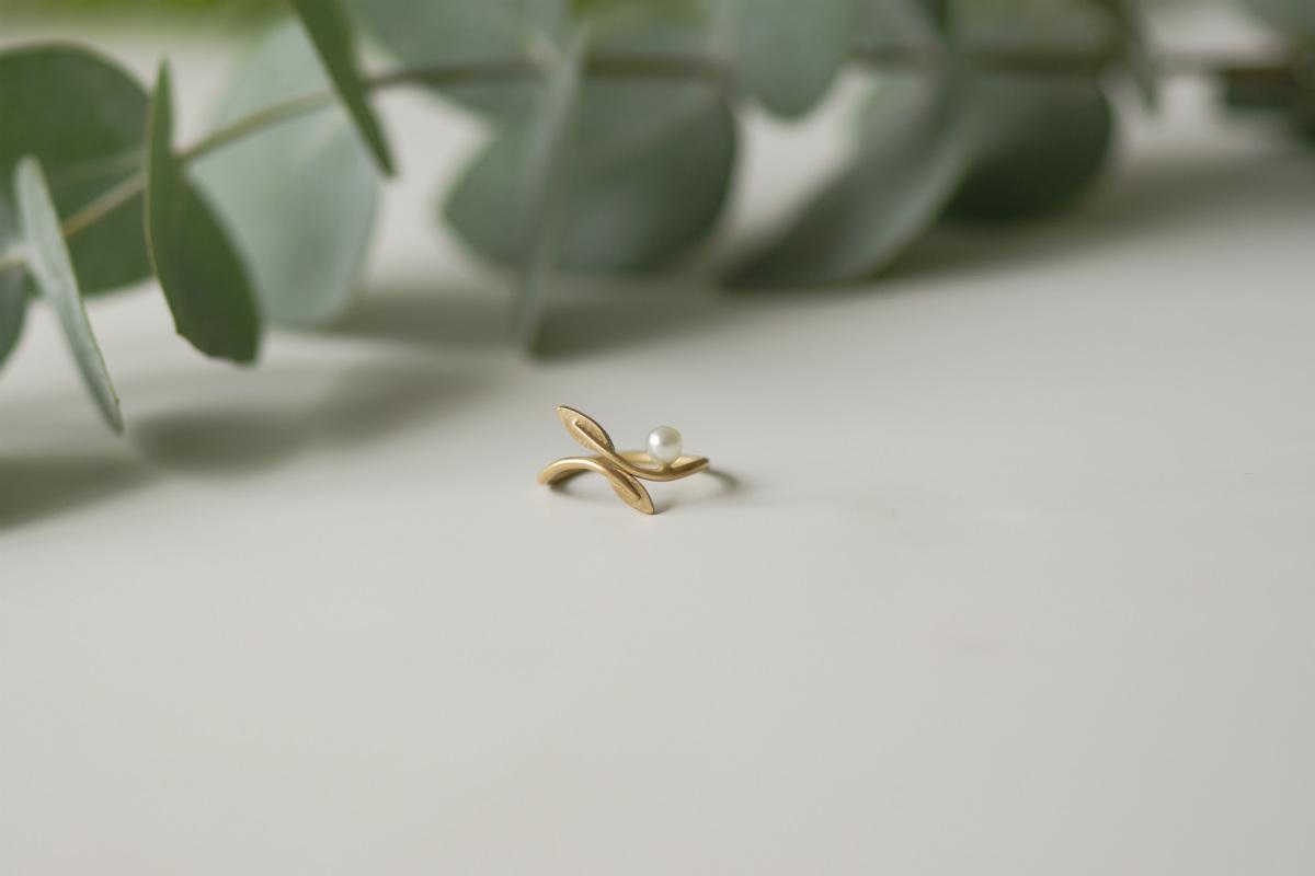 capa-anel-folhas